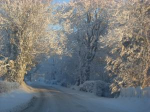 Our road last winter